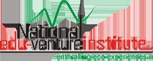 NEVI Logo